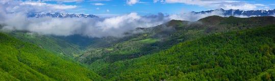 Skogen och berg från synvinkel av Piedrasluengas i det naturligt parkerar av Fuentes Carrionas arkivbild