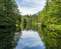 Skogen och den molniga himlen reflekterade i sjön Arkivfoton