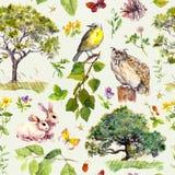 Skogen och parkerar: fågeln kanindjuret, träd, lämnar, blommor, gräs seamless modell vattenfärg Arkivbilder