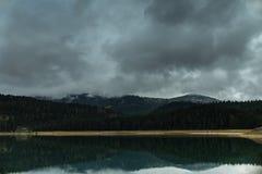 Skogen reflekterade i vatten av den svarta sjön Fotografering för Bildbyråer