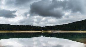 Skogen reflekterade i vatten av den svarta sjön Royaltyfri Bild
