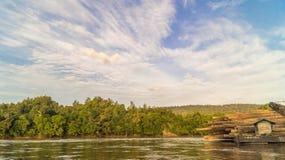 Skogexploatering Fotografering för Bildbyråer