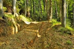 Skogexploateringväg för bråtetraktor Fotografering för Bildbyråer