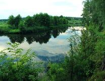 Skogflod i sommaren Royaltyfria Bilder