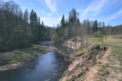 skogflod i våren - tappningfilmblick Arkivbild