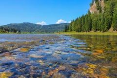 Skogflod med klart vatten och stenig botten arkivbilder