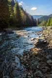 Skogflod med stenar och mossa Royaltyfri Fotografi