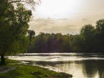 Skogfloden kan eftermiddagen soluppgång för liggandeflodfjäder Royaltyfria Foton