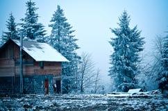 Skoghus i vinterskogen royaltyfri foto