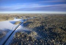skoghuvudvägvinter Fotografering för Bildbyråer