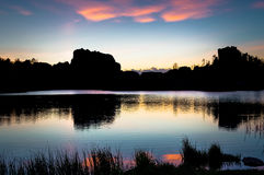 Skogig solnedgång royaltyfria foton