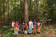 skogindia folk Royaltyfri Bild