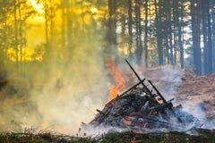 Skogklipp, bränna av skogavfalls aktivera rök Arkivbilder