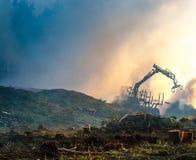 Skogklipp, bränna av skogavfalls Rök och brand, traktor n Arkivfoto
