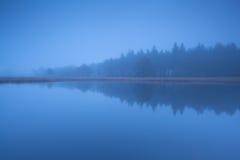 Skogkontur vid sjön i tät skymningdimma Royaltyfria Bilder