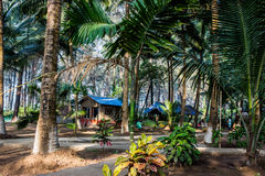 Skoglägerkabin och hus Royaltyfri Bild