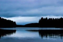 Skoglandskap, sjön och skogen, skymning i träna, skogstrand, blå himmel och sjö, skogreflexion i vatten Royaltyfria Bilder