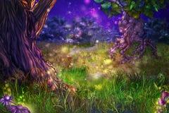 skogmagi Royaltyfria Foton