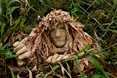 Skogman i gräset Royaltyfria Foton