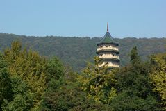 skognanjing pagoda Royaltyfri Fotografi