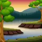 Skogplats med många träd och floden vektor illustrationer