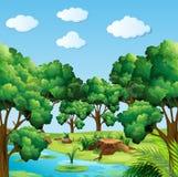 Skogplats med många träd och floden Fotografering för Bildbyråer
