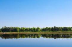 skogreflexionsflod Royaltyfri Fotografi