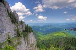 skogrock Royaltyfri Bild