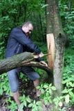 skogsarbetare fotografering för bildbyråer