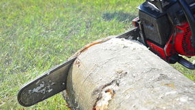 Skogsarbetare Cutting ett träd arkivfilmer