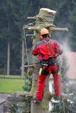 Skogsarbetare på arbete Royaltyfria Bilder