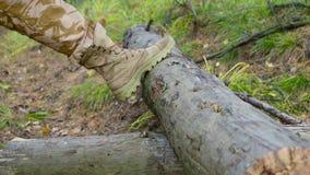 Skogsarbetare som som hugger av trä med en yxa arkivfilmer