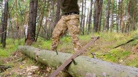 Skogsarbetarearbetaren som hugger av ner ett träd som bryter av många, splittrar i skogen med den stora yxan Stark sund vuxen män lager videofilmer