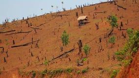 Skogsavverkning i Laos, bitande Rainforest, naken jord