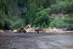 Skogsavverkning i nordliga Kanada Fotografering för Bildbyråer