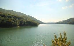 Skogsbevuxet berg- och flodlandskap Royaltyfri Bild