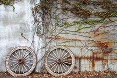 Skogsbevuxet vagnsvagnhjul Royaltyfri Foto