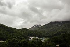 Skogsbevuxna berg i det regniga vädret i Sochi Royaltyfri Fotografi