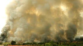 Skogsbränder i staden på en varm oversupply Brandman som hjälps att skynda för att förhindra brandspridning till byn lager videofilmer