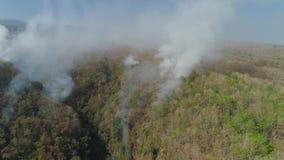 Skogsbrand i bergen lager videofilmer
