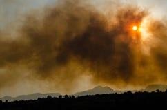 Skogsbrand i sänka del Bosque, Cuernavaca, Morelos, Mexico Arkivfoton