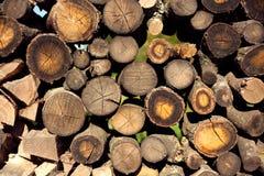 Skogsbruk bunt av trä, vedtrave, hög, journalhög, woodpulp Arkivfoto