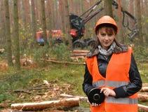 Skogsbrukarbetare Arkivbild
