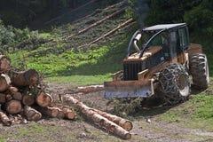 skogsbrukarbete Fotografering för Bildbyråer