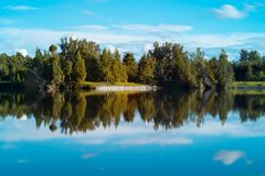 Skogsikt över en sjö Arkivbilder