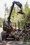 Skogskördearbetare Royaltyfria Bilder