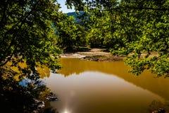 Skogsmark sjö Fotografering för Bildbyråer