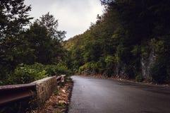 Skogsmarkbergväg med inget omkring och att vända lämnat arkivbild