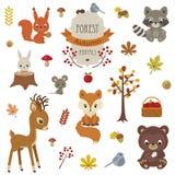 Skogsmarkdjur i hösttid arkivfoton