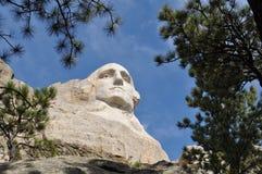 Skogsmarker för Mt Rushmore South Dakota royaltyfri foto